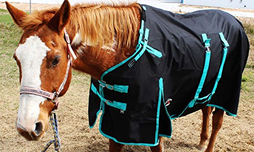 CHALLENGER 76'' 1200D Turnout Rain Horse Sheet Light Winter Blanket 356B by CHALLENGER (Image #2)
