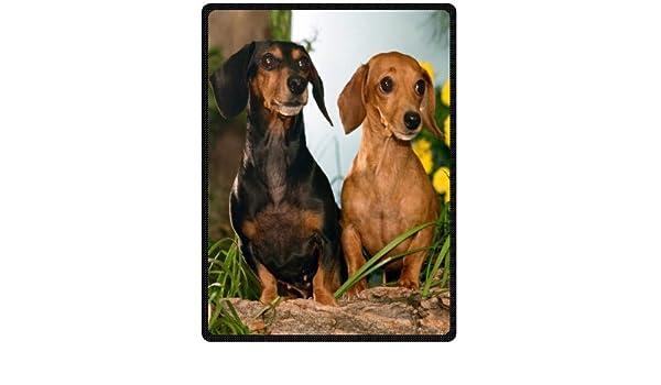 Custom cute love diseño de perro salchicha 58 cm x 80 cm (grande) manta de forro polar: Amazon.es: Hogar