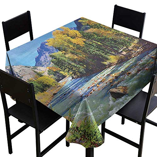 OUTDRART Tablecloth Stain Resistant Landscape,Mountains of Colorado with Lush Forest and River Summer Foliage Idyllic Photo, Multicolor,W60 x L60 Party Tablecloth Covers ()