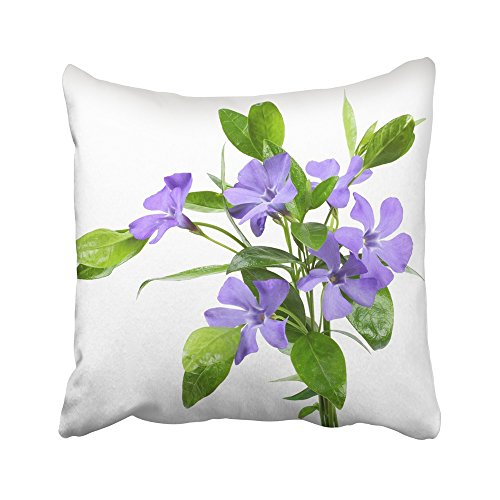 Top Bouquet Pillow (Emvency Decorative Throw Pillow Covers Cases Green Flat Bouquet of Blue Periwinkle Vinca Minor White Purple Flower Herbal Lay Leaf Myrtle Space 18x18 Inches Pillowcases Case Cover Cushion Two Sided)