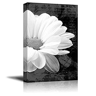 Up Close with a Daisy on a Black and White Vintage Portrait - Canvas Art Home Art - 16x24 inches