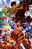 suicide squad vol 3 burning down the house rebirth