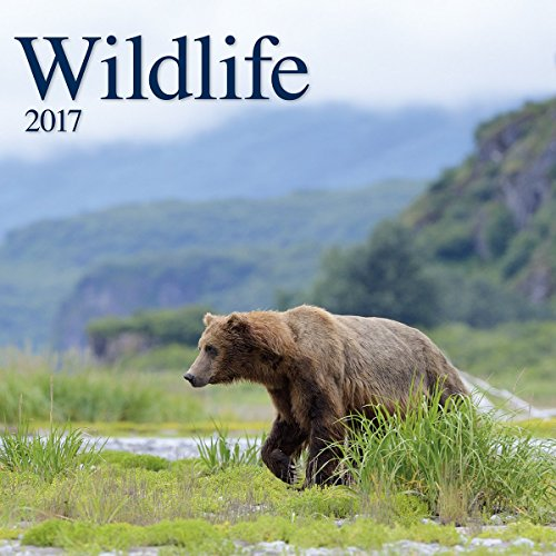 Turner Photo 2017 Wildlife Photo Wall Calendar, 12 x 24 inches opened (17998940071)
