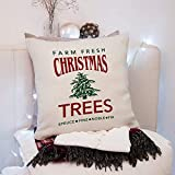 High quality Christmas Pillow Cover - Farm Fresh Christmas Trees Vintage Design Christmas Holiday Decor - Christmas Throw Pillow cover – Christmas gift