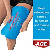 Ace Ice Bags - Best Reviews Guide