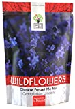 Chinese Forget Me Not Wildflower Seeds - Bulk 1/4 Pound Bag - Over 22,000 Open Pollinated Seeds - Blue Cynoglossum amabile