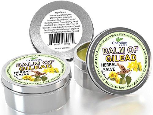 Beauty Bible Lip Balm - 6