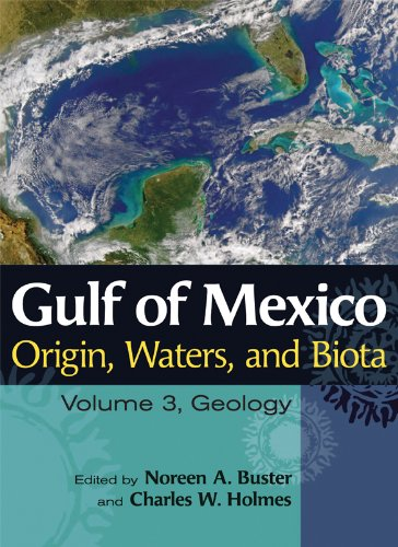 Gulf of Mexico Origin, Waters, and Biota, Volume 3: Geology