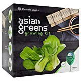 Planters' Choice Organic Herb Growing Kit + Herb Grinder - Complete Kit to Easily Grow 4 Herbs from Seed (Basil, Cilantro, Chives & Parsley) with Comprehensive Guide   Unique Gift