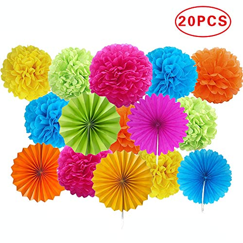 Ansuyai Paper Pom Poms Color Tissue Flowers Hanging Paper Fans Celebration Wedding Birthday Party Halloween Christmas Outdoor Decoration-Set of 20 -