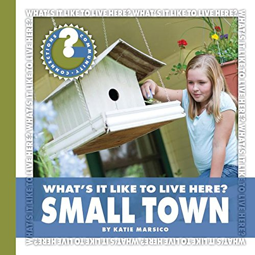 What's It Like to Live Here? Small Town (Community Connections: What's It Like to Live Here?) ebook