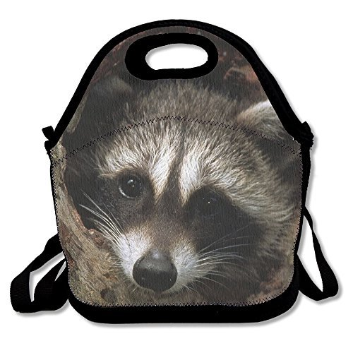 Raccoon In A Tree Hole Insulated Lunch Bag - Neoprene Lunch Bag - Large Reusable Lunch Tote Bags For Women, Teens, Girls, Kids, Baby, Adults Portable Carry Ready Made Pine Trees