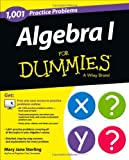 1,001 Algebra I Practice Problems for Dummies, Mary Jane Sterling, 1118446712