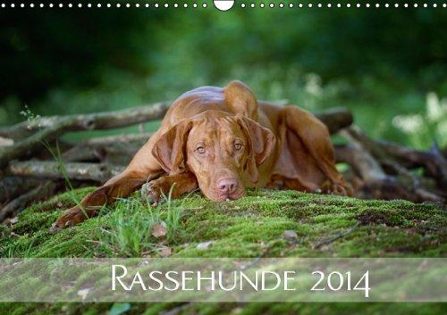 Rassehunde 2014 (Wandkalender 2014 DIN A3 quer): Kalendarium Rassehunde 2014 (Monatskalender, 14 Seiten)
