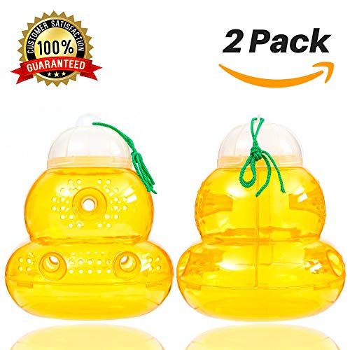 Wasp Trap Bee Traps Jar Hornet Trap Yellow Jacket Trap Attracts Hornets Yellow Jackets Bees Wasps Yellow Jackets Traps Plastic Wasp Trap Catcher Beehive Wasp Trap with Sugar Water Not Included 2 Pack