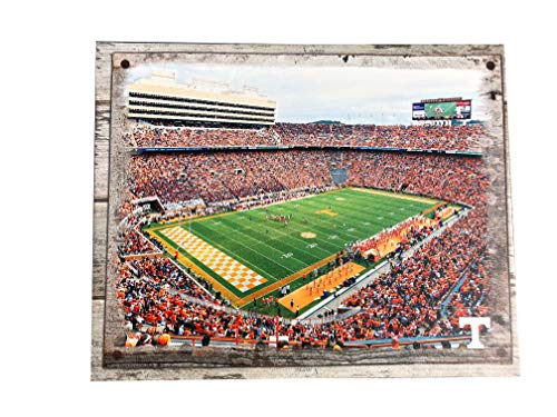Artissimo Designs Tennessee Volunteers Plank Sports Stadium and Arenas Canvas Artwork Wall Decor ()