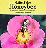 img - for Life of the Honeybee (Nature Watch) (English and German Edition) book / textbook / text book