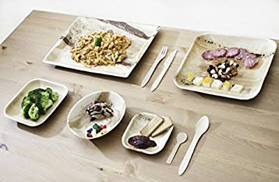 Leafware Party Pack - Natural Palm Leaf Dinnerware Set