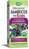 Nature's Way Sambucus, Organic Standardized Elderberry Syrup, 4 Fl. Oz, 4 Fluid Ounce