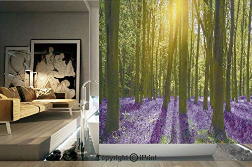 Ylljy00 Decorative Privacy Window Film/Sun Illuminates a Carpet of Bluebells Blooms Deep in Woodland in Oxfordshire/No-Glue Self Static Cling for Home Bedroom Bathroom Kitchen Office Decor