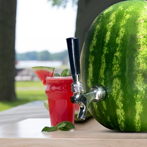 Blazin' Watermelon Tap - Brass and Chrome Keg Kit - Pumpkin Fruit Ice Tea Drink Dispenser ()