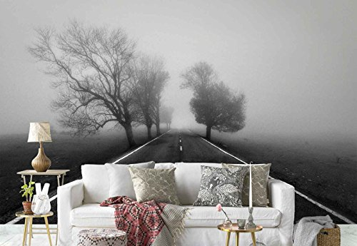 Photo wallpaper wall mural - Country Asphalt Road Trees Mist - Theme Travel & Maps - XL - 12ft x 8ft 4in (WxH) - 4 Pieces - Printed on 130gsm Non-Woven Paper - 1X-802651V8 by Fotowalls Photo Wallpaper Murals