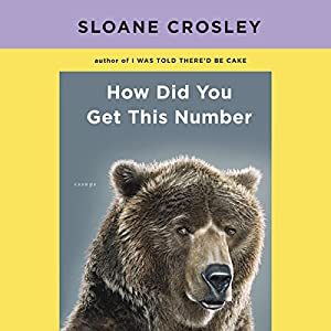 How Did You Get This Number Audiobook