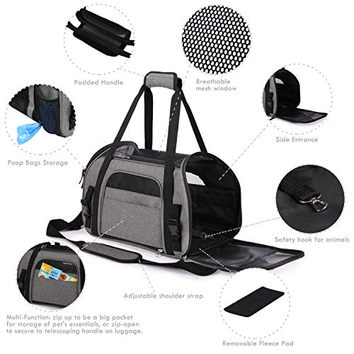 Buy small dog carrier