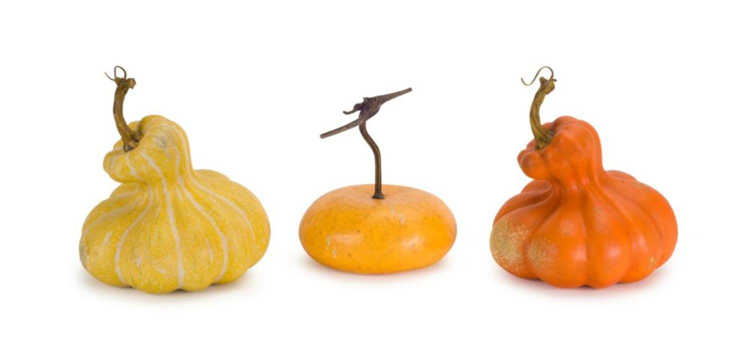 Set of 3 Artificial Autumn Harvest Yellow and Orange Decorative Gourds 6.5'' - 8''