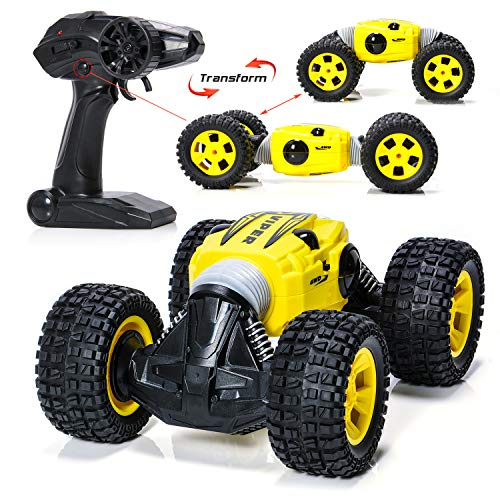 Speed Control Remote (EXERCISE N PLAY Carfire Remote Control Car, 1:16 RC Monster Trucks Hight Speed Off-Road Buggy Vehicle 2.4GHz Radio System Racing Monster Trucks (9901))