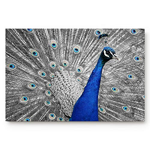 "Custom Doormats Magnificent Peacock Picture Vibrant Feathers Photo Pattern Indoor/Entry Way Bathroom Mats Rubber Non-Woven Fabric Non Slip 31.5""(L) x 20""(W) Inch"