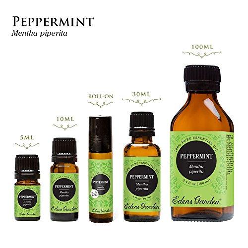 Edens garden peppermint 10 ml 100 pure undiluted - Edens garden essential oils reviews ...