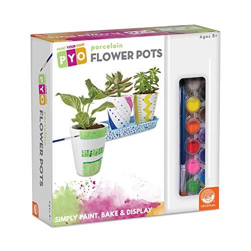 Paint Your Own (MindWare Paint Your Own Porcelain: (Flower Pot)