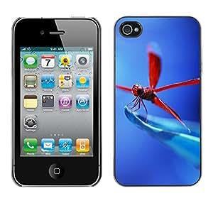 Caucho caso de Shell duro de la cubierta de accesorios de protección BY RAYDREAMMM - iPhone 4 / 4S - Libélula roja