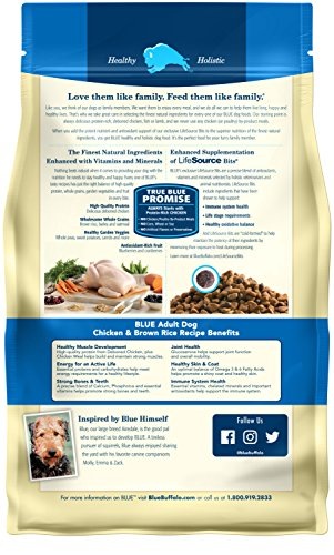 Buy jack russell puppy dog food