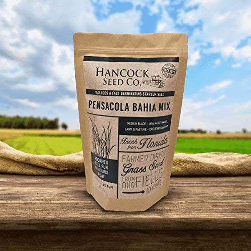 Hancock's Pensacola Bahia Grass Seed Mix (Coated)