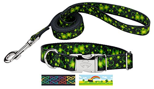 Dog Designer Collar Swirls (Country Brook Petz | Clovers in The Wind Premium Dog Collar & Leash - Large)
