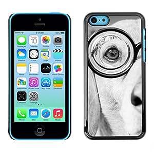 PC/Aluminum Funda Carcasa protectora para Apple Iphone 5C Glasses Labrador Terrier Dog White Black / JUSTGO PHONE PROTECTOR