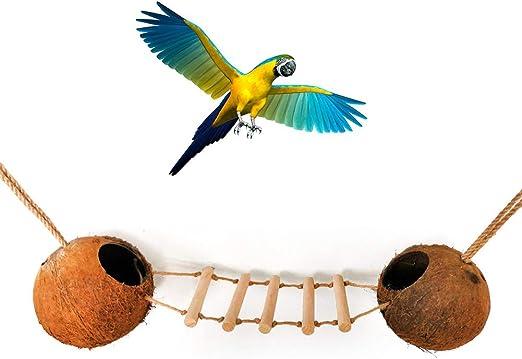 Whiie891203 Juguete para Loros, Concha de Coco, hámster, caseta para Mascotas, Loro, Escalera, Jaula de Juguete, decoración para periquitos, cacatúas, conuras, macacos, Loros, Pinches, Color marrón: Amazon.es: Productos para mascotas