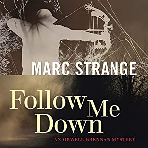 Follow Me Down Audiobook