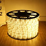 HuiZhen Upgraded 24V Rope Lights,100ft 2-Wire Waterproof Led Rope Light Kit for Background,Wedding,Party,Christmas,Bridges,Tree Decoration with UL Certified