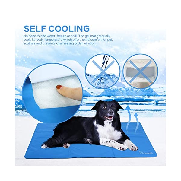 Pecute Dog Cooling Mat Medium 65x50cm, Durable Pet Cool Mat Non-Toxic Gel Self Cooling Pad, Great for Dogs Cats in Hot Summer 2