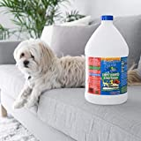 Pet-Friendly Stain and Odor Remover Carpet Cleaner