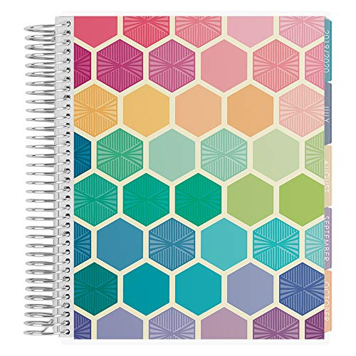 Erin Condren 12-Month July 2019 - June 2020 Coiled LifePlanner - Hexagon, Horizontal (Colorful Layout)
