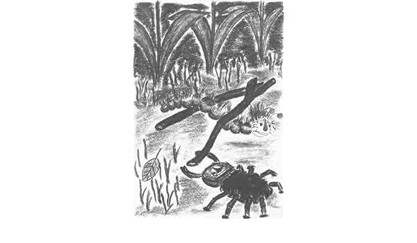 Buntringels Abenteuer (German Edition)