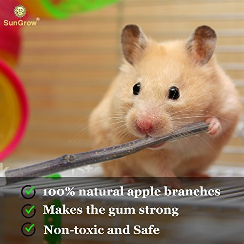 Image of Apple Cinnamon Chew Sticks - Molar and Teeth Grinding Toy for Small Pets - Pet Snack for Rabbits, Chinchillas, Hamsters, Guinea Pigs – Natural Apple Orchard Sticks for Healthy Teeth, Good Digestion