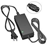 Owrieo 42V 2A Power Charger with PowerFast