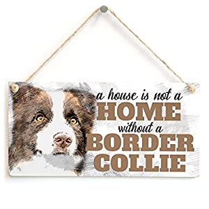 "Meijiafei A House is Not A Home Without A Border Collie - Cute Brown and White Border Collie Dog Sign/Plaque for Border Collie Gifts 10""x5"" 5"