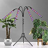Grow Light with Stand-60+3.5 Inches,Newest