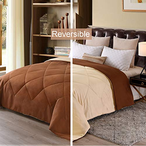 Exclusivo Mezcla Lightweight Reversible Down Alternative Quilted Comforter Duvet for All Seasons, Twin Size (64